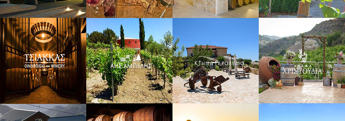 WINERIES EXCURSIONS IN CYPRUS