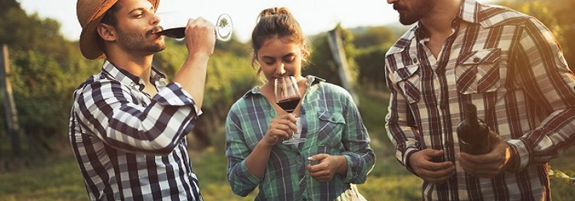 Discovering the Best of Cyprus Wines for Free